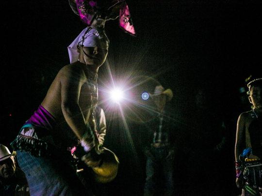 Danza Venado